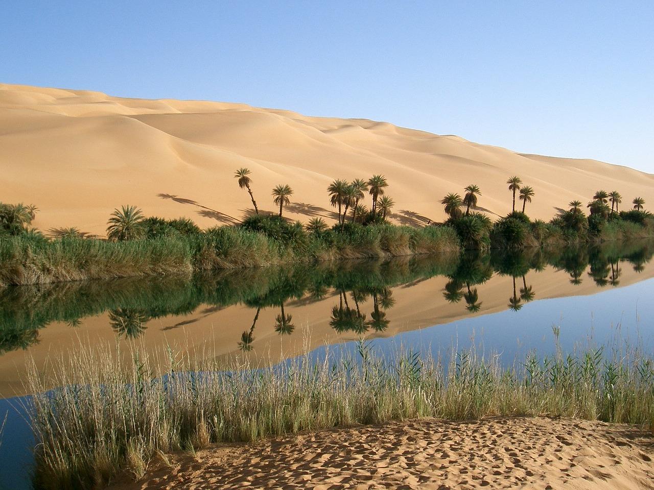 oasis-67549_1280